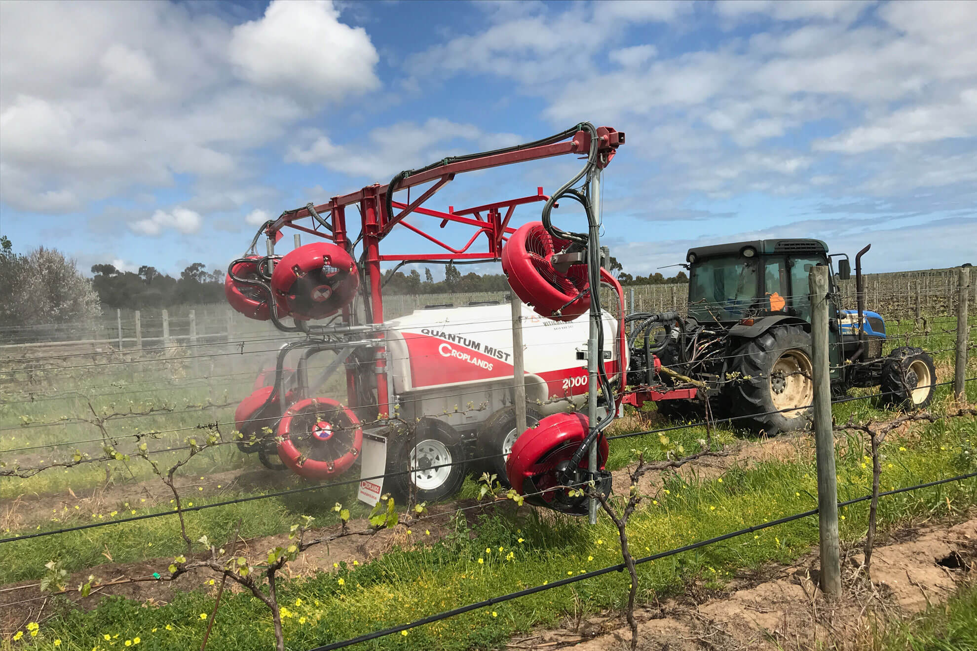 Fungicide used for vineyard protection