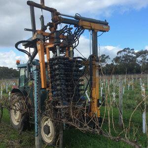 Mechanical Pruning of vineyards