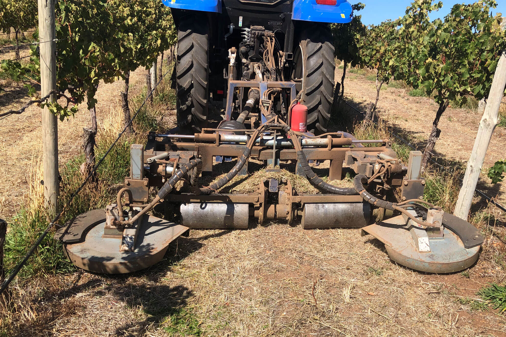 Weed control by Pridham viticulture
