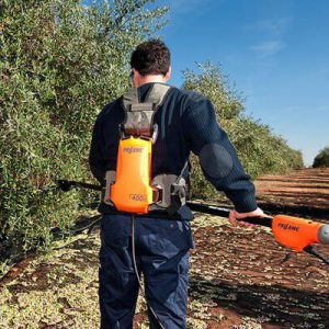 Olive Harvesting Rake