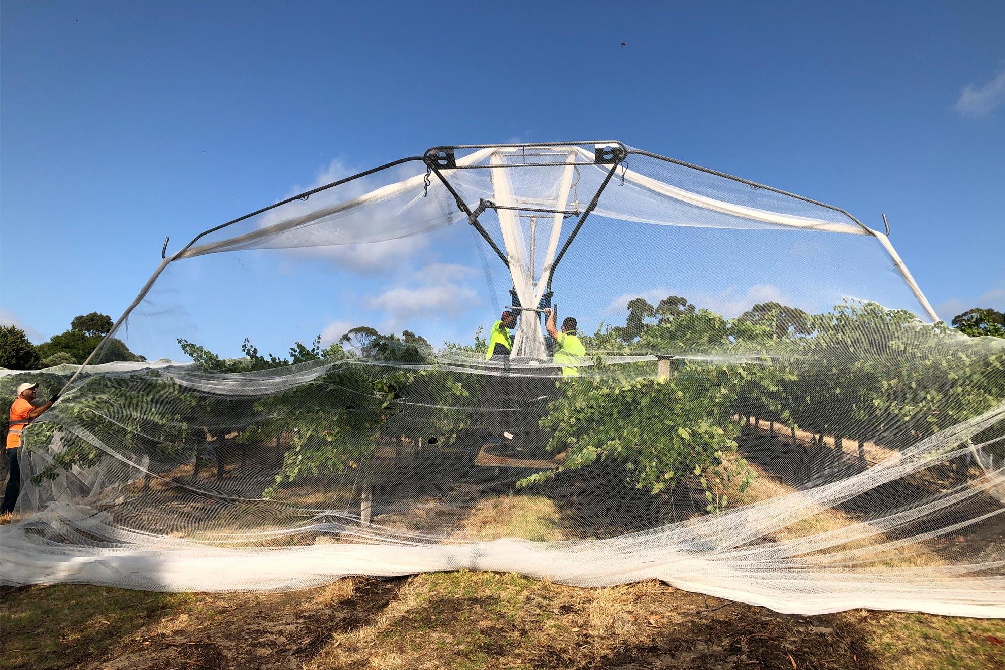 Bird Netting 2021