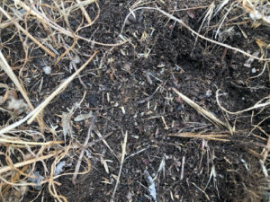 Difference in soil